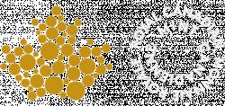 Mint.ca logo