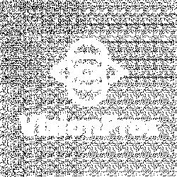 Vision Pros logo